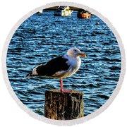 Seagull Perch Round Beach Towel