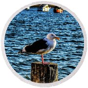 Seagull Perch Round Beach Towel
