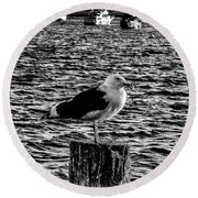 Seagull Perch, Black And White Round Beach Towel