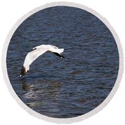 Seagull Round Beach Towel by Yumi Johnson