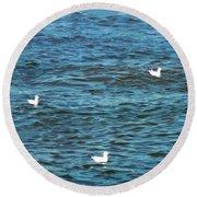 Seagulls And Water Art Round Beach Towel