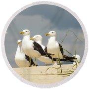 Seagulls At The Beach Round Beach Towel