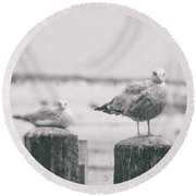 Seagulls  Round Beach Towel by Heather Green