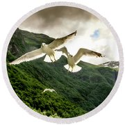 Seagulls Over The Fjord Round Beach Towel