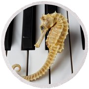 Seahorse On Keys Round Beach Towel