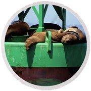 Seals On Channel Marker Round Beach Towel