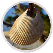Cockelshell On Tree Branch Round Beach Towel