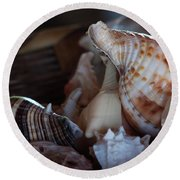 Round Beach Towel featuring the photograph Seashells  by Ana Mireles