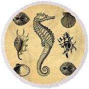 Round Beach Towel featuring the digital art Seashells Vintage by Edward Fielding