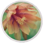 Round Beach Towel featuring the photograph Secret Garden by Ana V Ramirez