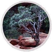 Sedona Tree #3 Round Beach Towel