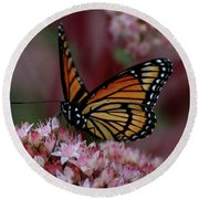 Round Beach Towel featuring the photograph Sedum Butterfly by Melissa Lane