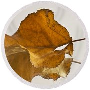 Seeing Double Autumn Leaf  Round Beach Towel