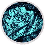 Seeing Through Trees Round Beach Towel