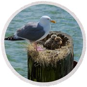 Seagull Family Round Beach Towel by Richard J Cassato