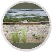Round Beach Towel featuring the photograph Semipalmated Plover by Ricky L Jones