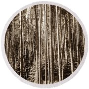 Round Beach Towel featuring the photograph Sepia Forest by Marilyn Hunt