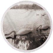 Sepia Swans Round Beach Towel