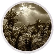 Round Beach Towel featuring the photograph Sepia Tone Of Cholla Cactus Garden Bathed In Sunlight by Randall Nyhof
