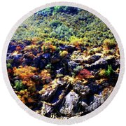 Round Beach Towel featuring the photograph Sequoia Color by Timothy Bulone