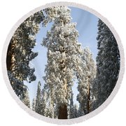 Sequoia National Park 4 Round Beach Towel