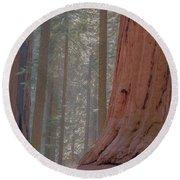 Sequoia Round Beach Towel