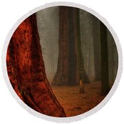 Sequoias In The Clouds Round Beach Towel