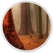 Sequoias Touching The Clouds Round Beach Towel