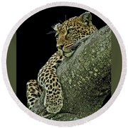 Serengeti Leopard 2a Round Beach Towel