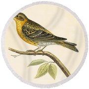 Serin Finch Round Beach Towel