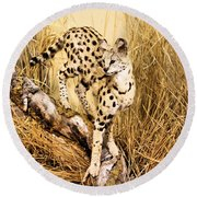Serval Round Beach Towel