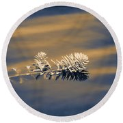 Round Beach Towel featuring the photograph Set Apart by Carolyn Marshall