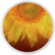 Round Beach Towel featuring the photograph Setting Sun by Darren Fisher
