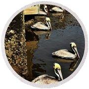 Seven Pelicans Round Beach Towel