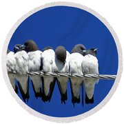 Seven Swallows Sitting Round Beach Towel