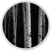 Round Beach Towel featuring the photograph Shades Of A Forest by James BO Insogna