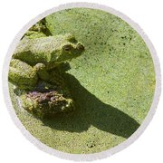 Shadow And Frog Round Beach Towel