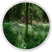 Shadow And Light In A Forest Round Beach Towel