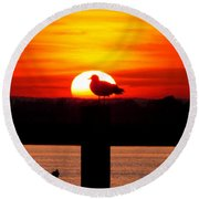 Shadow Gull Round Beach Towel