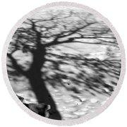 Shadow Tree  Herrick Lake  Naperville Illinois Round Beach Towel