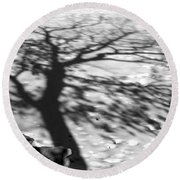 Shadow Tree  Herrick Lake  Naperville Illinois Round Beach Towel