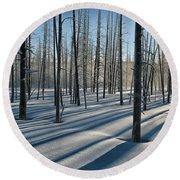 Shadows Of The Forest Round Beach Towel