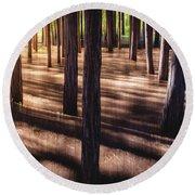 Round Beach Towel featuring the photograph Shadows by Okan YILMAZ