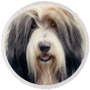 Shaggy Dog Round Beach Towel
