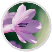 Round Beach Towel featuring the photograph She Listens Like Spring by Linda Lees