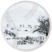 Sheep Shelter  Round Beach Towel