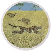 Sheer Speed Round Beach Towel by Pat Scott