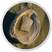 Shell In Shell  Round Beach Towel