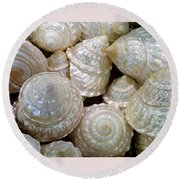 Shells - 4 Round Beach Towel
