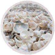Shells 2 Round Beach Towel